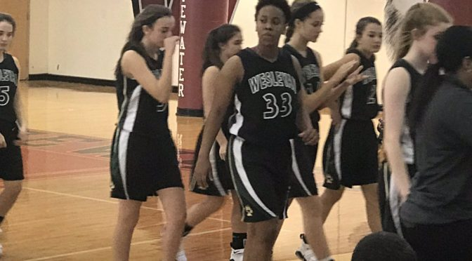 Explosive fourth quarter powers No. 2 Wesleyan past Fayette County at Queens of the Hardwood Classic